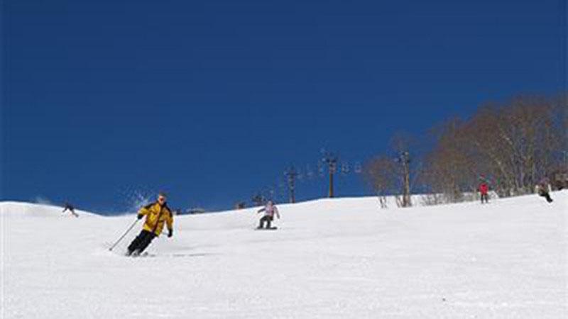 県 場 兵庫 スキー
