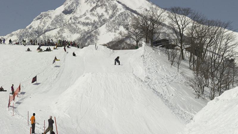 積雪 場 新潟 スキー