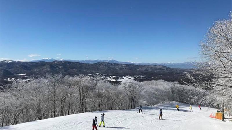 スキー 場 は 流れ 月山スキー場