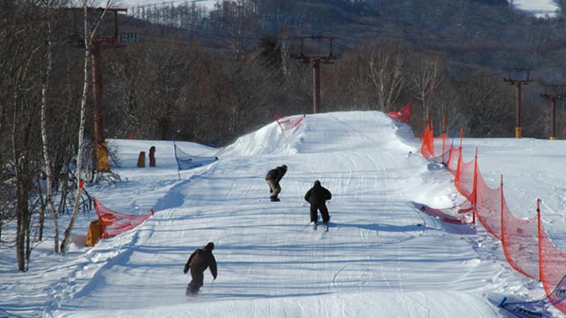 エーデルワイス スキー 場