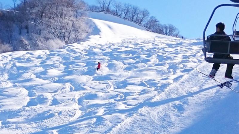 奥 伊吹 スキー 場 積雪